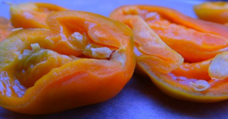 Split Orange Habanero